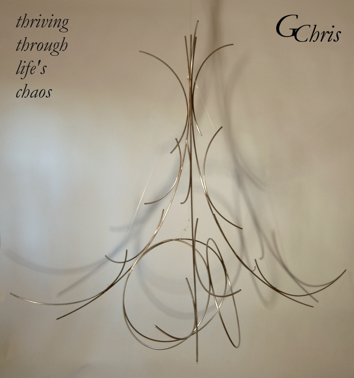 thriving-through-lifes-chaos-102008